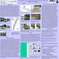 Sapelo LSSI Cannons Point Poster
